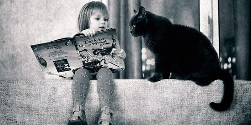 Домашних животных часто заводят для детей