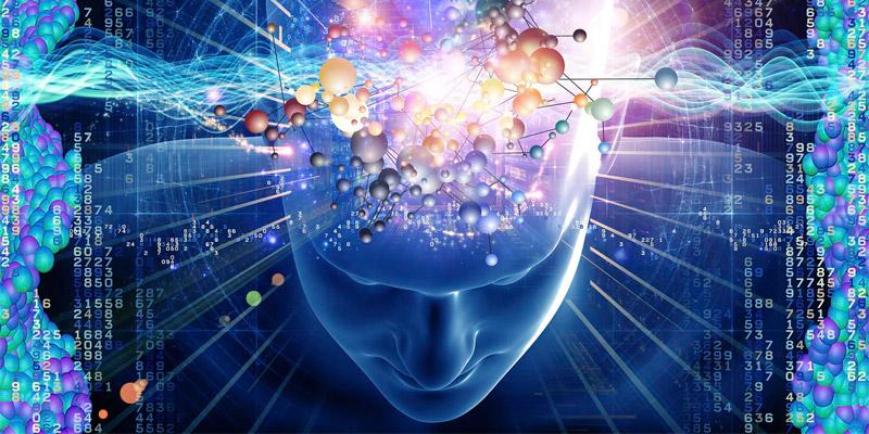 Мозг в морфическом поле