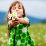 Системные расстановки: кого догонит счастье?